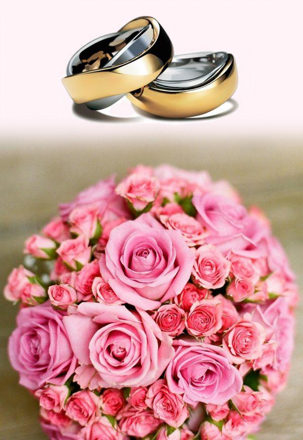 rosas-para-compromiso